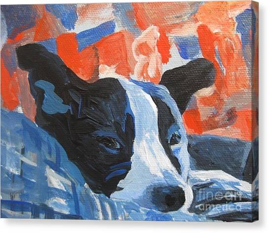 Monty Keeping Watch Canvas Print