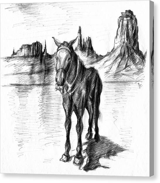 Landscape Canvas Print - Monument Valley Mule - Western Art by Art America Gallery Peter Potter