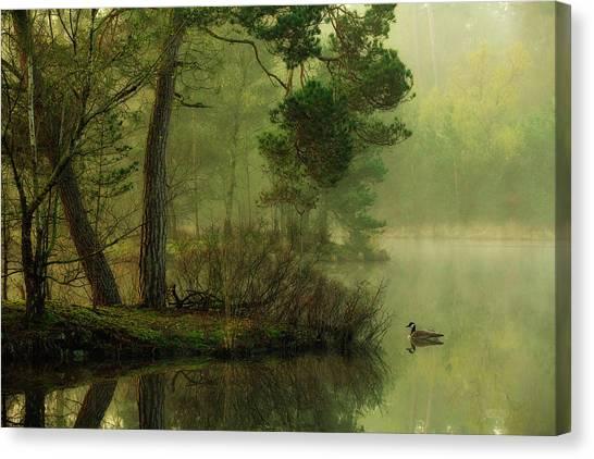 Geese Canvas Print - Mood Of Spring by Anton Van Dongen