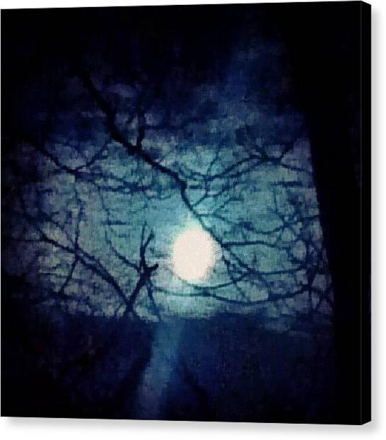 Skylines Canvas Print - Moon Framed By Tree Branches by Genevieve Esson