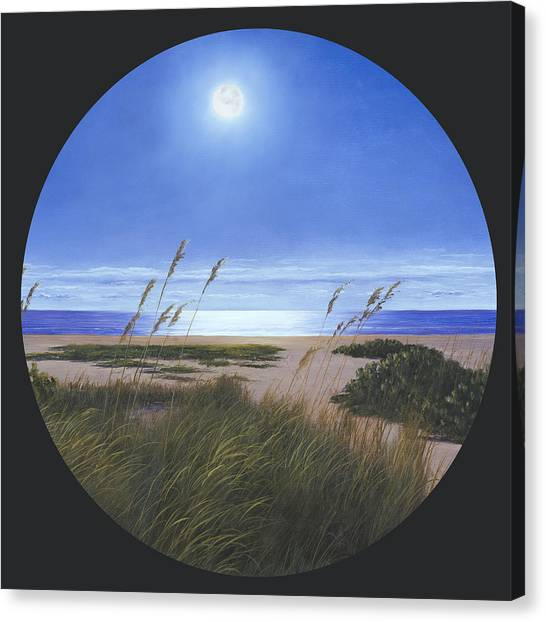 Moon Light  Canvas Print