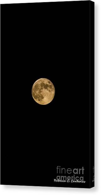 Moon Nights Canvas Print by Rebecca Christine Cardenas