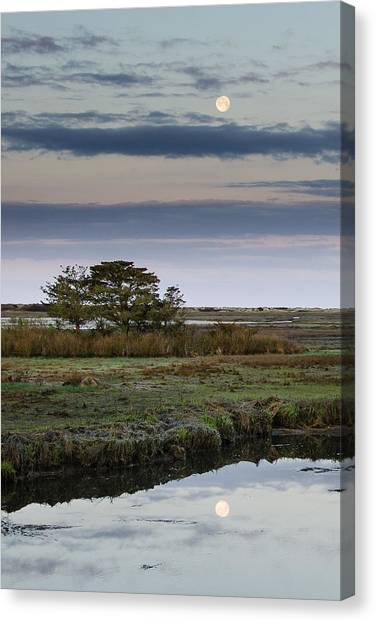 Moon Over Marsh Canvas Print