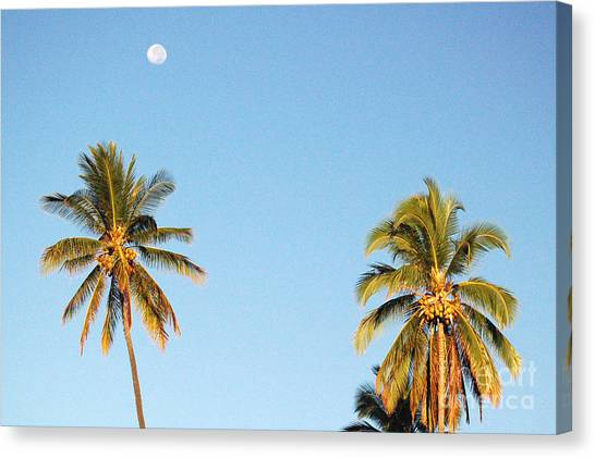 Moon Over Molokai Canvas Print