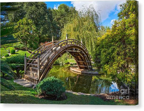Weeping Willows Canvas Print - Moonbridge - The Beautifully Renovated Japanese Gardens At The Huntington Library. by Jamie Pham