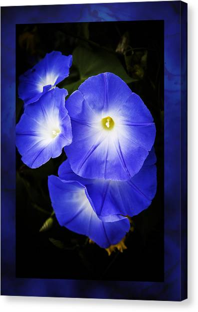 Moonglow On Blue Canvas Print