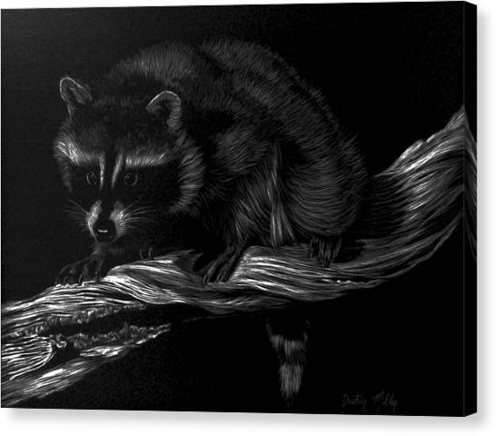 Moonlight Bandit Canvas Print