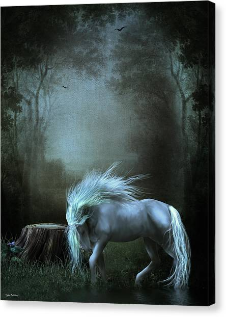Moonlight Becomes Her Canvas Print
