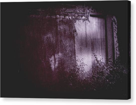 Moonlight Entrance  Canvas Print