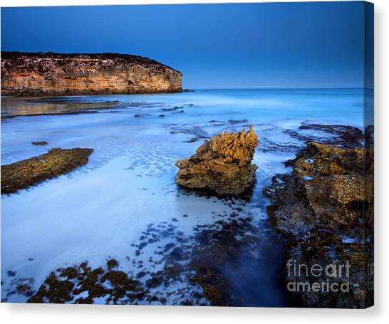 Pennington Bay Canvas Print - Moonlight Glow by Mike  Dawson