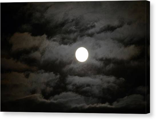 Moonlight Magic Canvas Print
