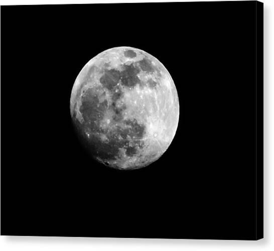 Moonlit Dreams Canvas Print