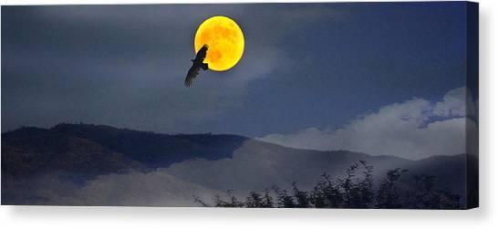 Moonlit Freedom Of Flight Canvas Print