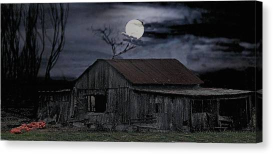 Moonshine Nights Canvas Print