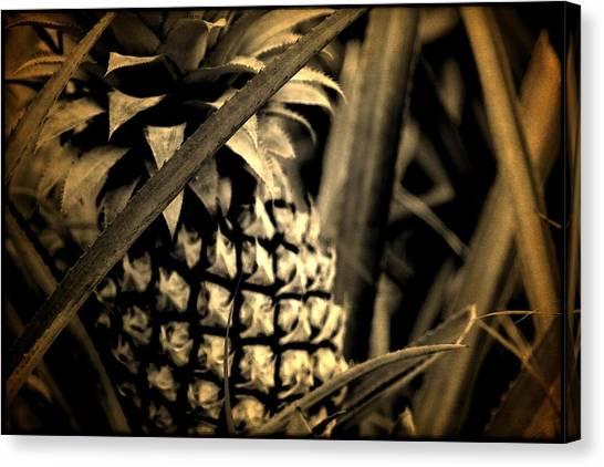 Moorea Pineapple Canvas Print