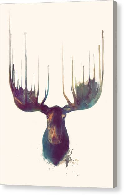 Antlers Canvas Print - Moose by Amy Hamilton