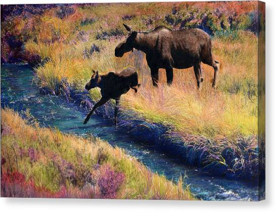 Moose And Calf Canvas Print