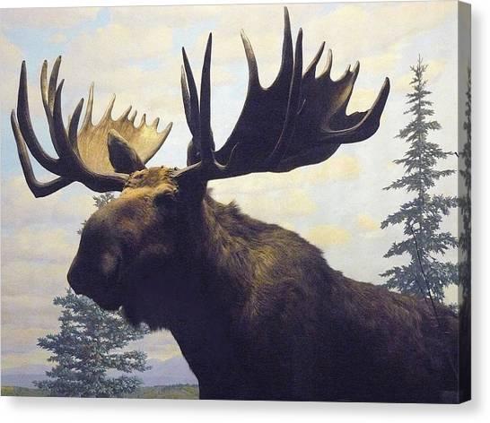 Moose Diorama Canvas Print