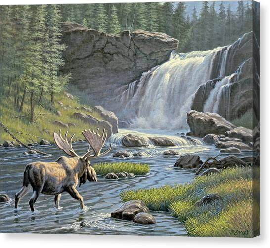 Moose Canvas Print - Moose Falls by Paul Krapf