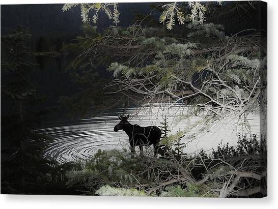 Moose Has Happy Hour Canvas Print