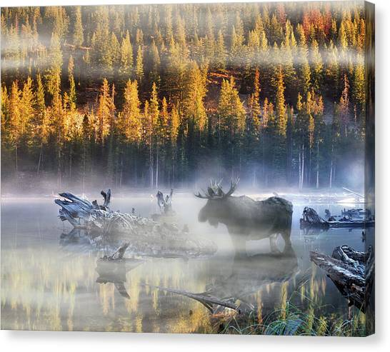 Idaho Canvas Print - Moose Lake by Leland D Howard