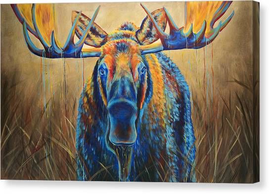 Moose Canvas Print - Moose Marsh by Teshia Art