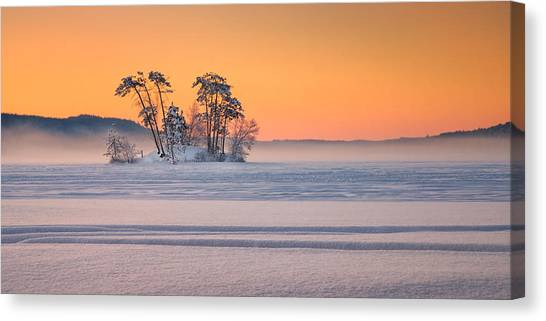 Moose Pond Winter Sunrise Canvas Print