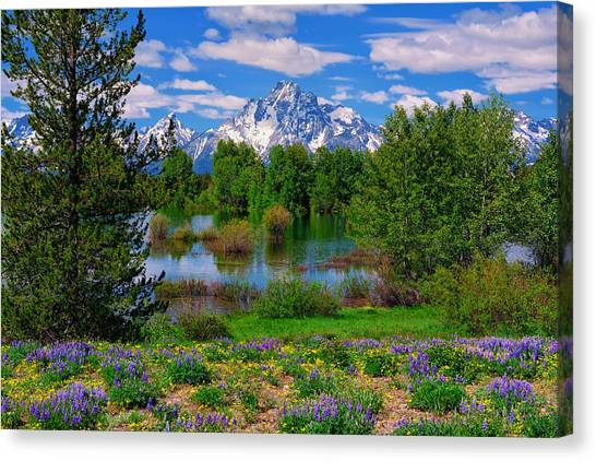 Canvas Print featuring the photograph Moran From Pilgrim Creek by Greg Norrell