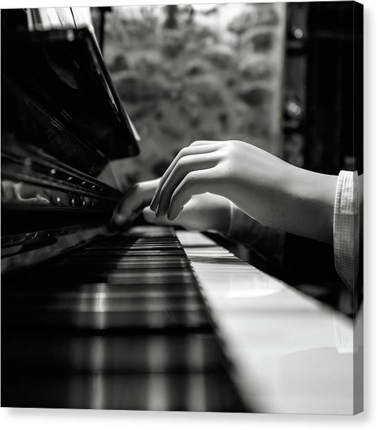 Keyboards Canvas Print - More Music Please by Marco Antonio Cobo