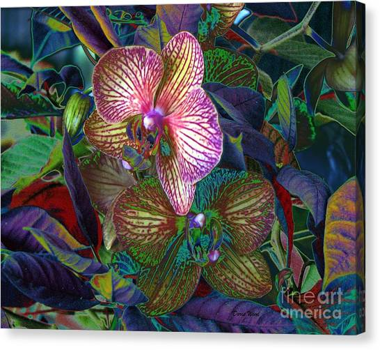 More Orchids Canvas Print by Doris Wood