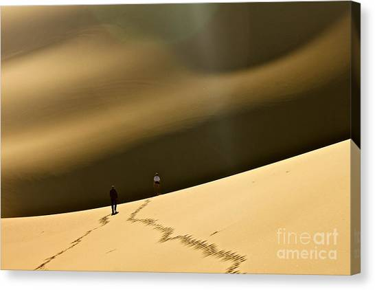 More Stars Than Sand Canvas Print