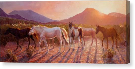 Wild Horse Canvas Print - More Than Light Arizona Sunset And Wild Horses by Karen Whitworth