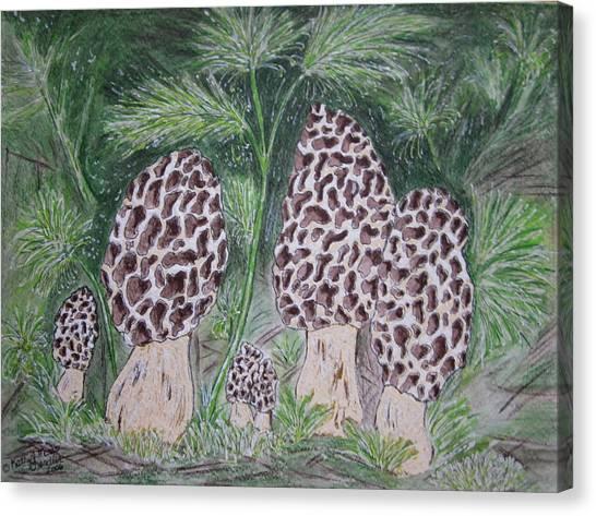Morel Mushrooms Canvas Print