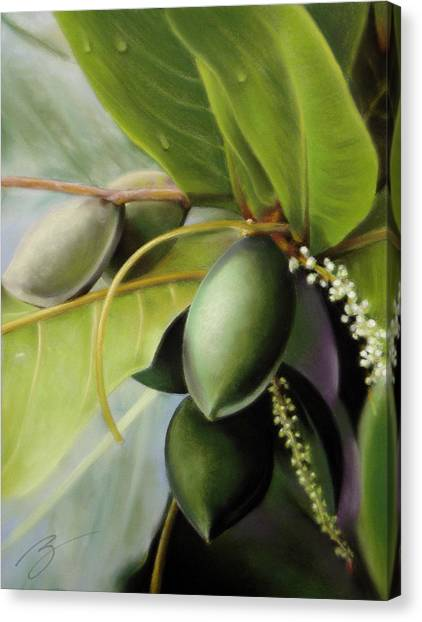 Morning Almonds Pastel Canvas Print