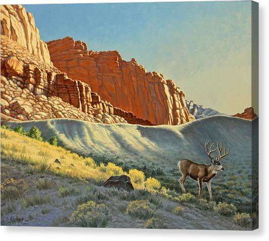 Buck Canvas Print - Morning At Capitol Reef by Paul Krapf