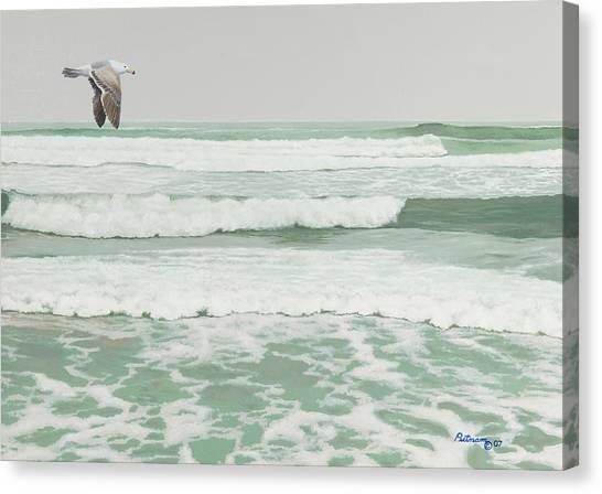 Morning At Pomponio Shore Patrol Canvas Print
