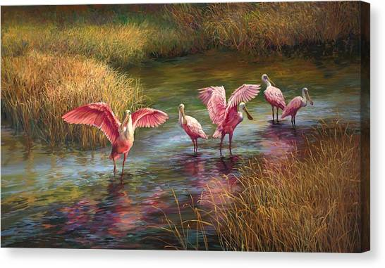 Everglades Canvas Print - Morning Dance by Laurie Hein