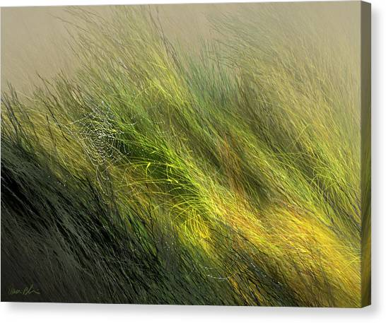 Morning Dew Drops Canvas Print