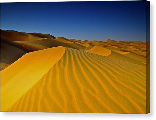 Arabian Desert Canvas Print - Morning Dunes 2 by Mike Cowan