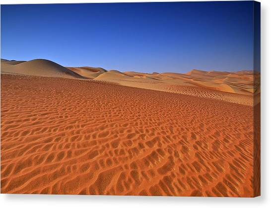 Arabian Desert Canvas Print - Morning Dunes 3 by Mike Cowan