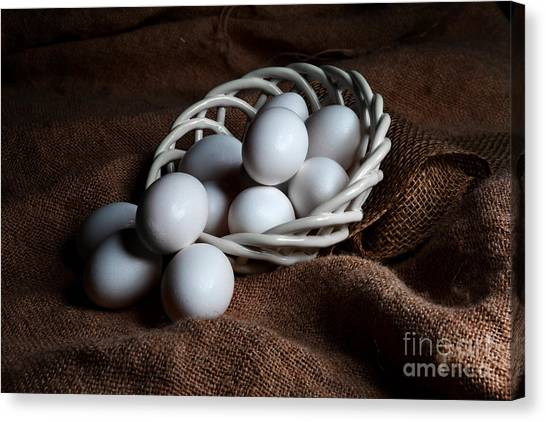 Morning Eggs Canvas Print