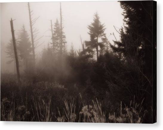Gatlinburg Tennessee Canvas Print - Morning Fog In The Smoky Mountains by Dan Sproul
