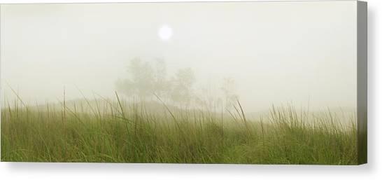 Morning Fog On The Dunes Canvas Print