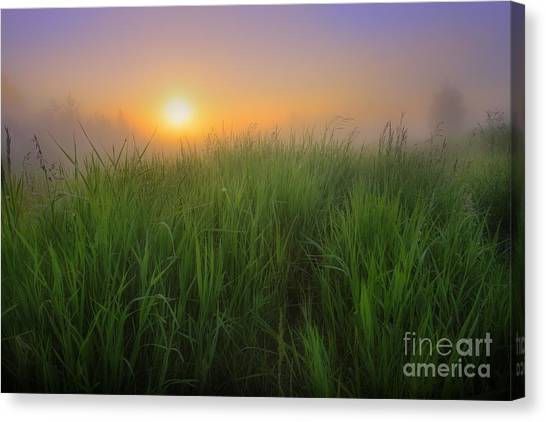 Morning Fresh Canvas Print