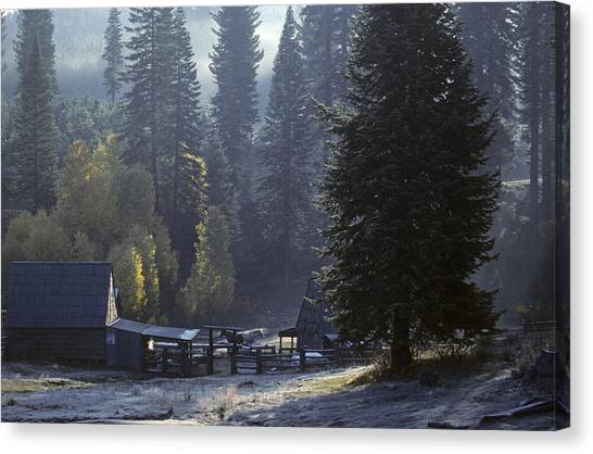 Morning Frost At Dawn Canvas Print