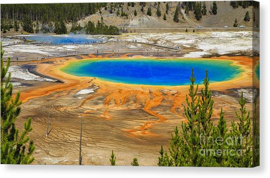 Grand Prismatic Geyser Yellowstone National Park Canvas Print