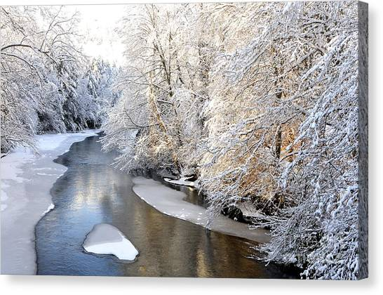 Morning Light Fresh Snowfall Gauley River Canvas Print
