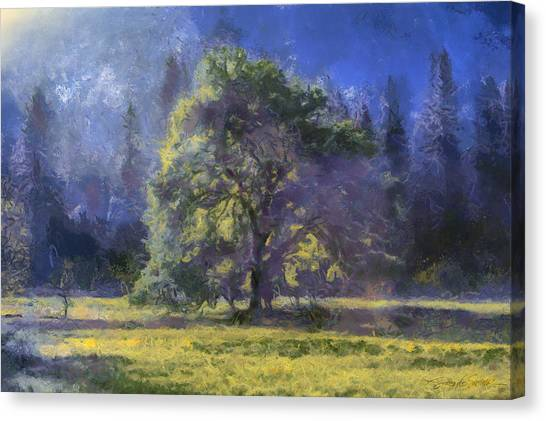morning light Yosemite Valley Canvas Print