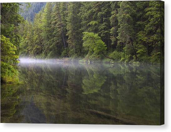 Tongass National Forest Canvas Print - Morning Mist At Redoubt by Tim Grams