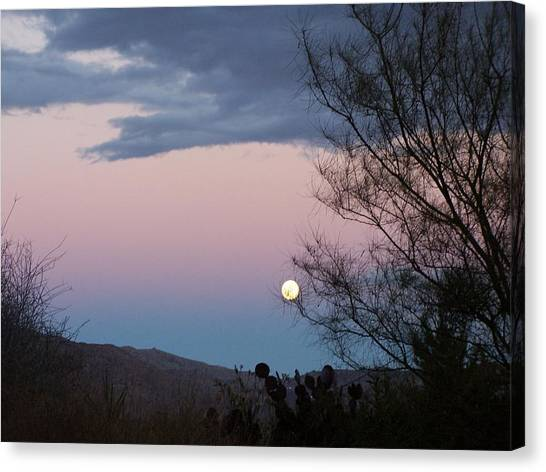Morning Moon Canvas Print